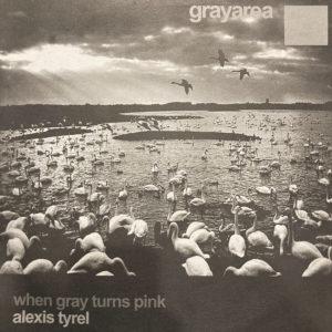 grayarea007